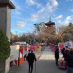 法華経寺の初詣、今年も境内に屋台が出店し賑やかです
