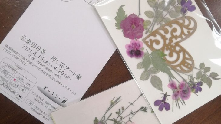 押し花作家・北原先生の展覧会をギャラリー樹さんで開催中です。